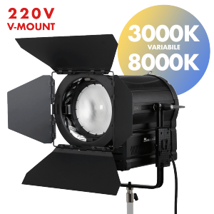 fari led fresnel 300W per video e fotografia